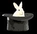 Rabbit in hat.jpg